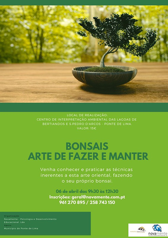 Workshop bonsais  1 1024 2500